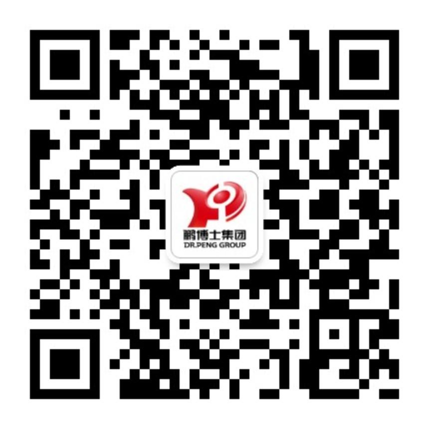 鹏博士电信传媒集团